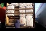 Видео: как в фуре под видом плит спрятали 21 тонну груш