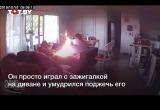 Видео: щенок поджег дом, пока хозяев не было