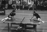 Самый веселый матч теннисистов (видео)