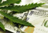 В США предлагают работу дегустатора марихуаны за 3 тысячи долларов в месяц