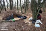 Россиянин и белорус прятались от правосудия в лесу под Малоритой