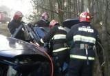 Под Брестом легковушка влетела в дерево: водителя деблокировали спасатели