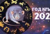 2020 год - это год Белой Металлической Крысы
