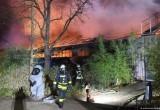 В немецком зоопарке погибли более 30 животных при пожаре