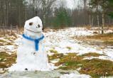 На выходных в Брест вернется теплая погода