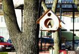 На набережной в Бресте появились уютные кормушки для птиц