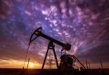 Цена на нефть рухнула ниже 25 долларов за баррель