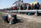 Ад на границе: украинские заробитчане возвращаются домой