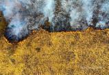 Посмотрите с высоты птичьего полета, как горели болота под Пинском (видео)