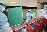 Уже 1981 случай коронавируса зафиксирован в Беларуси