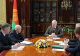 Лукашенко: относились бы ответственно к природе – вирусы нас не взяли бы (видео)
