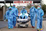 Названы сроки окончания пандемии коронавируса в мире