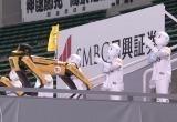 Роботы устроили массовый танец на матче в Японии (видео)