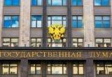 Госдума России направит наблюдателей на выборы в Беларусь