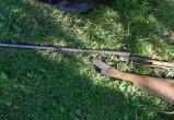 Две группы браконьеров задержали на Брестчине благодаря фотоловушкам