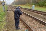 В Брестской области неизвестный повредил поезд и средство сигнализации