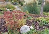 Почему на немецких кладбищах все меньше надгробий
