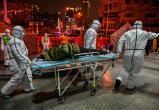 Год назад выявили первый случай коронавируса