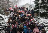 МВД сообщило о 271 задержанном на протестах 13 декабря