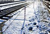 Электропоезд Минск-Брест насмерть сбил мужчину под Оранчицами