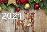 Что надеть и где встречать Новый год 2021, чтобы понравиться символу года?