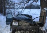 14-летняя девочка пострадала в аварии под Брестом