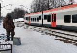 Пассажирский поезд Брест – Минск столкнулся со стадом лосей