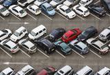 МВД получит доступ к данным о водительских медсправках