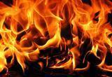 В Бресте на пожаре погиб молодой парень