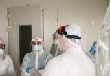 Коронавирус в Беларуси: 586 новых случаев и 10 смертей за сутки