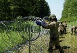 Литве не хватает колючей проволоки для строительства заграждения на границе с Беларусью