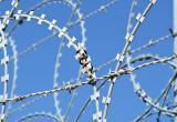Украина предоставит Литве колючую проволоку для ограждения на границе с Беларусью