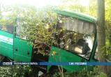 Автобус под Столином вылетел с дороги. По пути к ДТП погиб работник МЧС (фото)