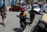 Нидерланды направят дополнительный военный персонал в Афганистан