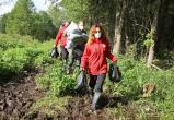 УВКБ ООН поблагодарило Беларусь за возможность передать гуманитарную помощь беженцам