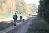 Беларусь привлекла к охране границ с ЕС вооруженные силы и внутренние войска