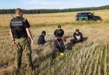 ЕСПЧ запретил Литве высылать застрявших на границе пятерых афганцев-нелегалов