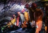 Ученый описал версию появления COVID после сотни мутаций в теле шахтера